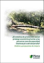 Protección económica de las personas con discapacidad intelectual o del desarrollo